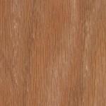 Red Oak TR